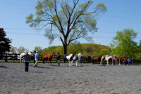 ALL other pictures 5-4-14 Saddleview Ranch Horse Show